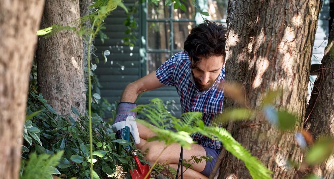 męskie hobby ogród